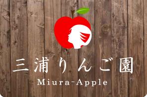 青森産地直送のおいしいりんごなら [ 青森県平川市 三浦りんご園 ]
