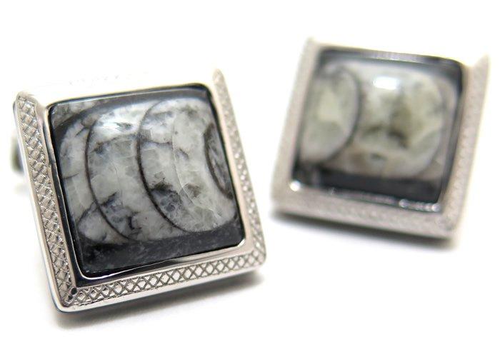 TATEOSSIAN(タテオシアン) オルソセラスフォッシルシルバーカフス(ロジウム) 世界限定40セット (カフスボタン/カフリンクス) - ブランドの画像
