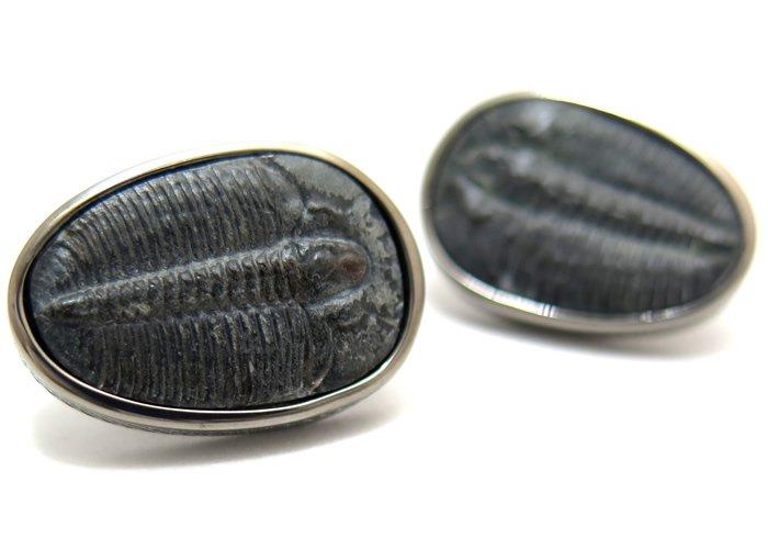 TATEOSSIAN(タテオシアン) トライロバイトシルバーカフス(ブラックロジウム) 世界限定50セット (カフスボタン/カフリンクス) - ブランドの画像