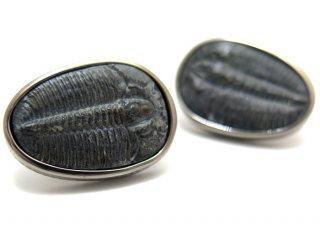 TATEOSSIAN(タテオシアン) トライロバイトシルバーカフス(ブラックロジウム) 世界限定50セット (カフスボタン/カフリンクス) - ブランド