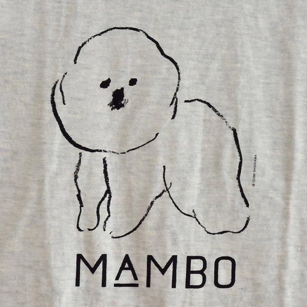 「CLASKA(クラスカ)」のMAMBO(マンボ)Tシャツの生地