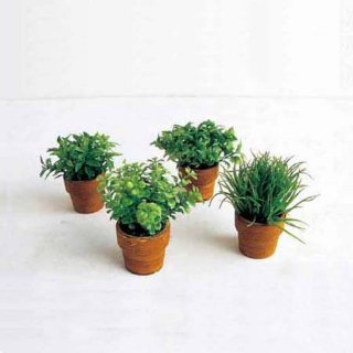 MINI GREEN POT 4SET