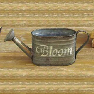 BLOOM WATERING OVAL POT