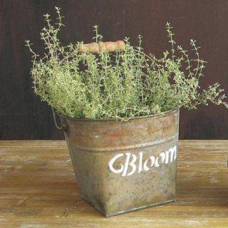 BLOOM BUCKET L