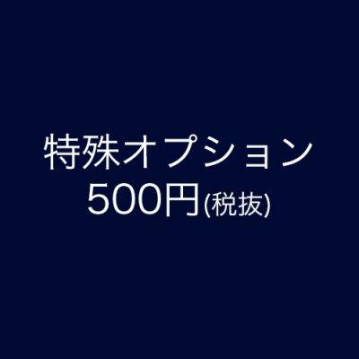 オプション用500円