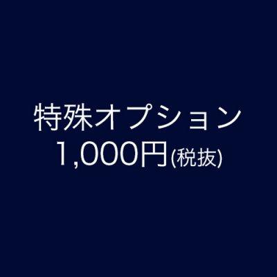 オプション用1,000円