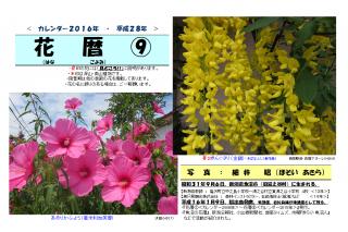 花暦2016年カレンダー