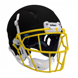 SCHUTT VENGEANCE Z10 LTD 2020 ヘルメット