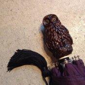 Guy de Jean (ギドゥジャン) 折りたたみ傘 フクロウ Prune