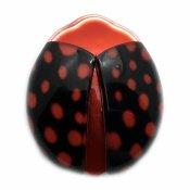 LEA STEIN Ladybug(リアスタン テントウムシ)