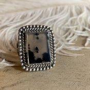 Navajo Split Picture Agete Ring (ナバホ スプリット  アゲート リング)