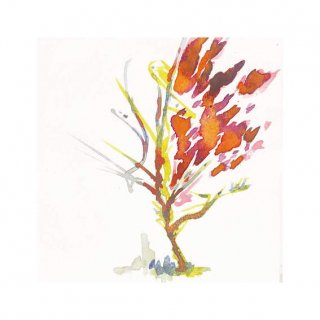 街路樹のためのドローイング#15