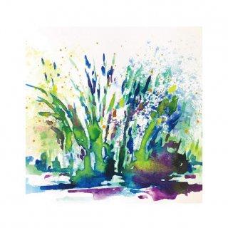 水草のためのドローイング #1