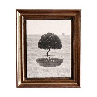1本の木、エステレマドゥーラ。