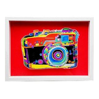 恋するカメラ(アートボックス)