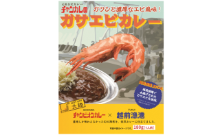 【送料無料】チャンカレのガサエビカレー×12個セット