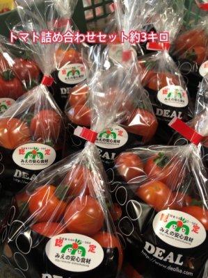 デアルケトマトお任せセット約3kg  ご予約受付中、現在ご予約多数により2020年2月のお届けご予約になります。