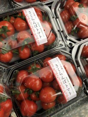 さくらんぼトマト 申し訳ありません。今期売り切れ、11月月お届け予約です
