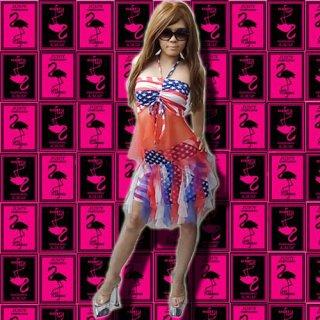 USAアメリカンシースルーセットアップ衣装
