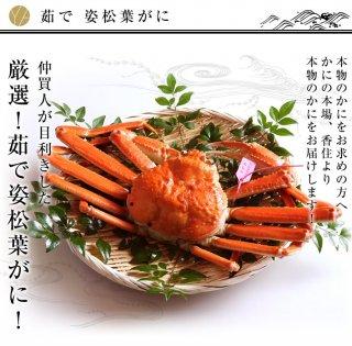 茹で 姿松葉ガニ (4月〜10月は冷凍となります)