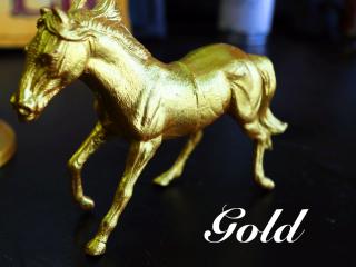 眩い輝きの「Gold/ゴールド」