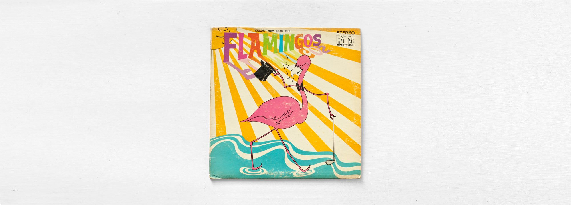 Color Them Beautiful : The Flamingos