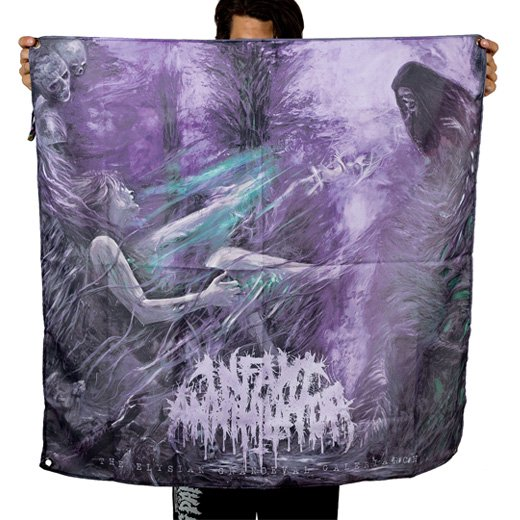 <img class='new_mark_img1' src='//img.shop-pro.jp/img/new/icons1.gif' style='border:none;display:inline;margin:0px;padding:0px;width:auto;' />Infant Annihilator / インファント・アナイアレーター - The Elysian Grandeval Galeriarch. フラッグ【お取寄せ】