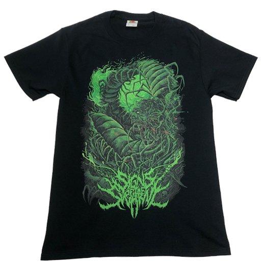 Signs of the Swarm / サインズ・オブ・ザ・スワーム - Insectum. Tシャツ【お取寄せ】