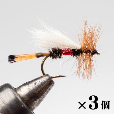 ロイヤルトルード×3 (B-2)