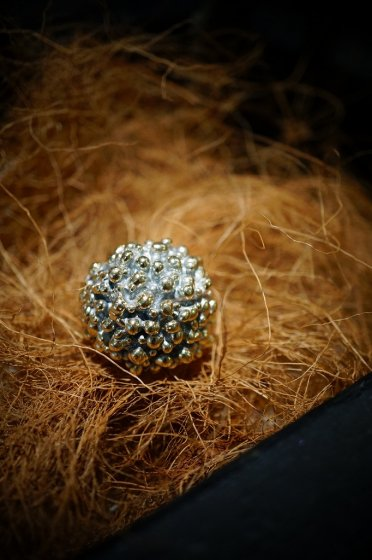 Sea Urchin Band Ring (リング)[AN60 OTAG]