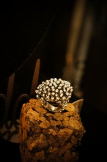 Sea Urchin Band Ring (リング)[AN08 AGBR]
