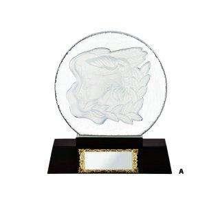 ガラス楯 JP-VS.5001