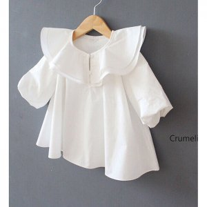 big collar frill blouse