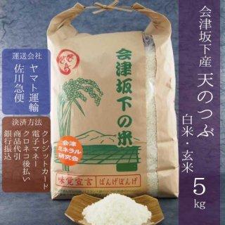 令和元年産 会津坂下産天のつぶ 白米・玄米 5kg
