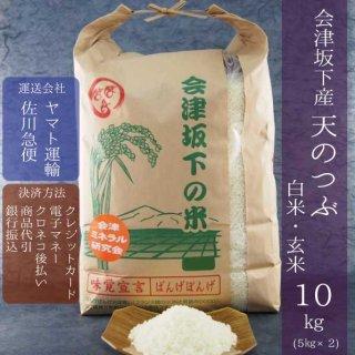 令和元年産 会津坂下産天のつぶ 白米・玄米 10kg