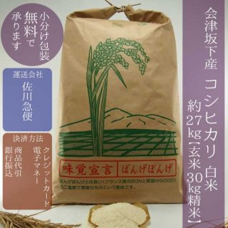 令和元年産 会津坂下産コシヒカリ 精米30kg(白米約27kg)【小分け包装可】
