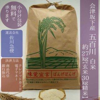 令和元年産 会津坂下産五百川精米30kg(白米約27kg)【小分け包装可】