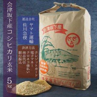 令和元年産 会津坂下産コシヒカリ 玄米5kg