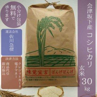 令和元年産 会津坂下産コシヒカリ 玄米30kg【小分け包装可】