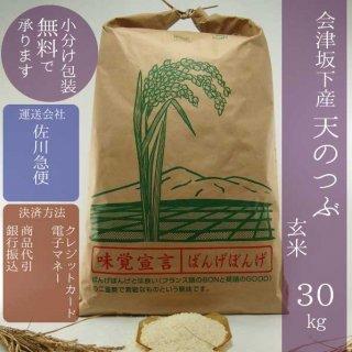令和元年産 会津坂下産天のつぶ 玄米30kg【小分け包装可】