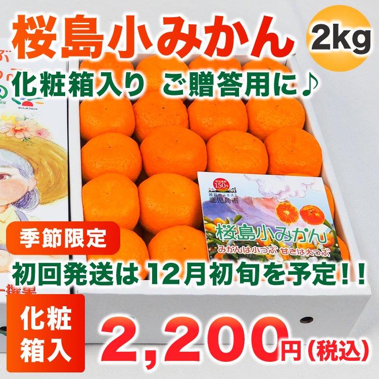 桜島小みかん 2Kg(化粧箱)