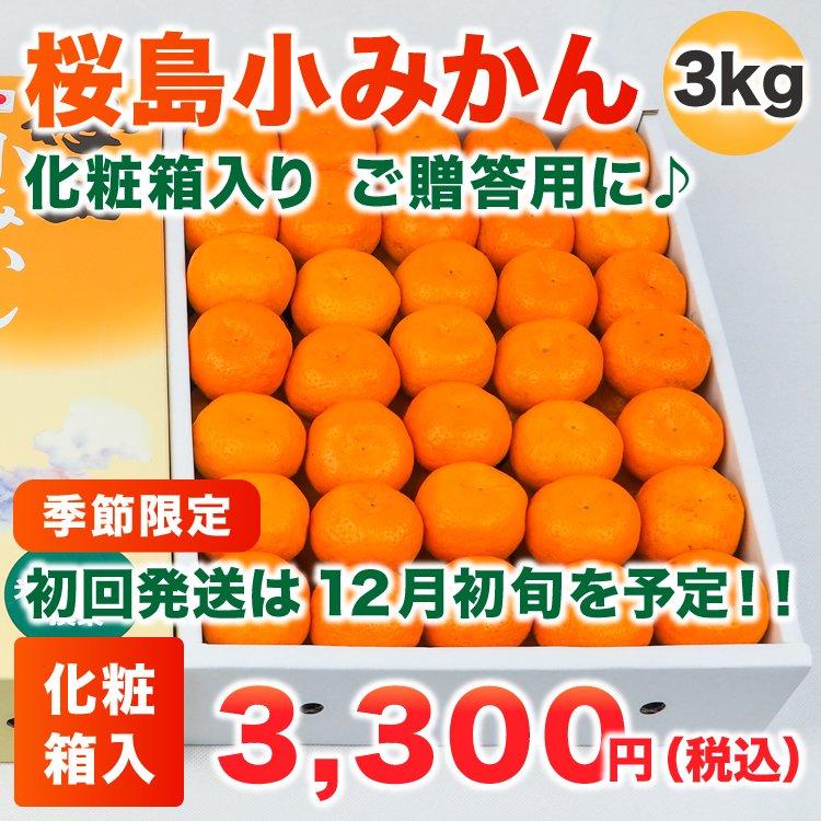 桜島小みかん 3Kg(化粧箱)