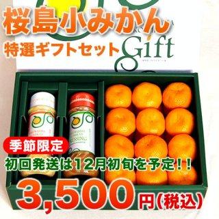 桜島小みかん特選ギフトセット(旬彩館商品)
