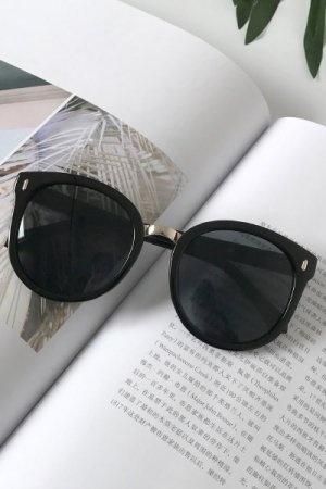 Black Frame Simple Sunglasses (Black)