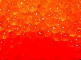 虹鱒(にじます)のイクラ 80g_写真