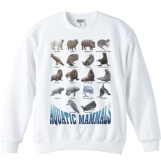 水棲 哺乳類のリスト/トレーナー