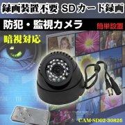 監視カメラ SDカード録画 小型タイプ 暗視タイプ 防犯カメラ 録画も可 常時録画 高画質 SDカード録画 赤外線 暗視 記録 CAM-SD02-30826