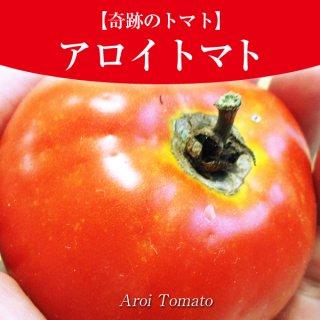 【奇跡のトマト】アロイトマトの種10粒〜一般的に手に入らない品種〜(送料無料)