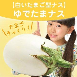 【たまごソックリの白ナス!】ゆでたまナスの種10粒(送料無料)