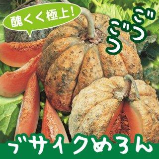 ブサイクめろんの種10粒 〜醜く極上に美味しいイタリアンメロン!〜